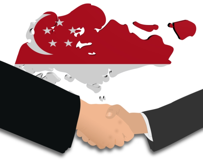 Singapore Trade Treaties DTA FTA
