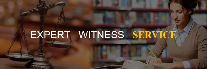 business-ideas-expert-witness-service