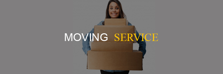 business ideas of providing moving service