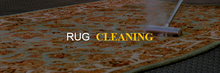 business-ideas-rug-cleaning 55 Business Ideas to get you started as an Entrepreneur