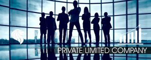 private-limited-company-300x120 How to Start a Business in 10 Days